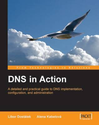 DNS in Action by Alena Kabelova