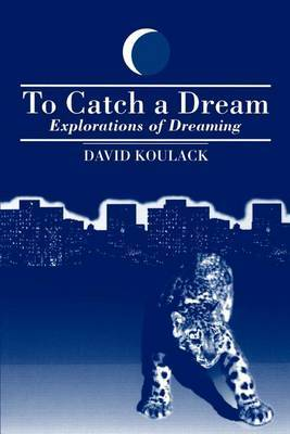 To Catch A Dream by David Koulack image