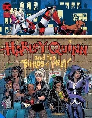 Harley Quinn and the Birds of Prey: The Hunt for Harley by Jimmy Palmiotti