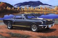Revell 1:24 Shelby Mustang GT 350 H Model Kit