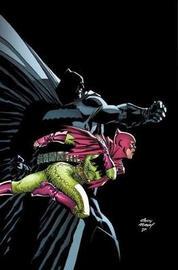 Batman: The Dark Knight by Frank Miller