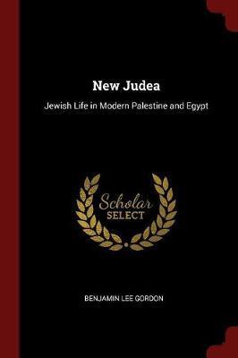 New Judea by Benjamin Lee Gordon image