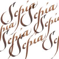 Winsor & Newton: Calligraphy Ink - Sepia 609 (30ml)