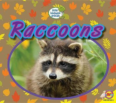Raccoons by Heather Kissock image