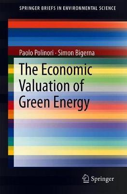 The Economic Valuation of Green Electricity by Paolo Polinori image