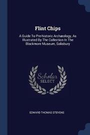 Flint Chips by Edward Thomas Stevens