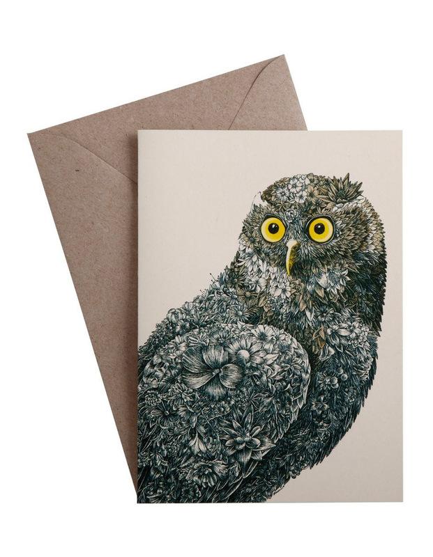 Maxwell & Williams: Marini Ferlazzo Birds Greeting Cards - Owl