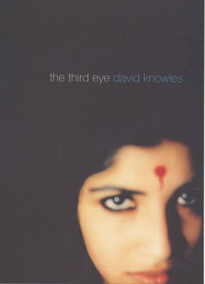 The Third Eye by David Knowles image