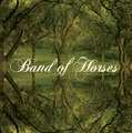 Everything All the Time (LP) by Band of Heroes