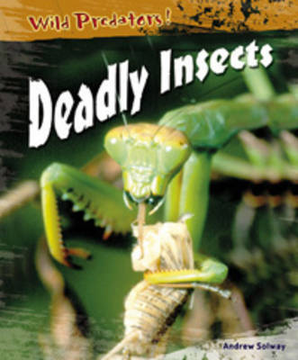 Deadly Insects by Andrew Solway