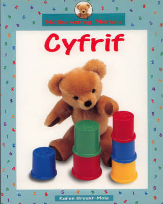 Cyfrif Big Book: Big Book by Karen Bryant-Mole image
