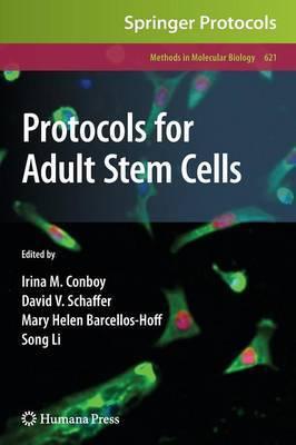 Protocols for Adult Stem Cells image