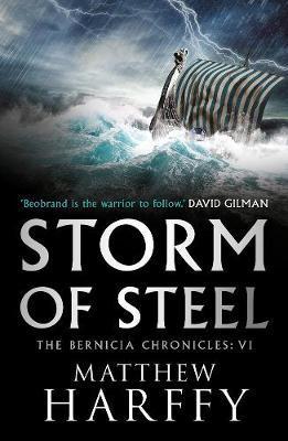 Storm of Steel by Matthew Harffy