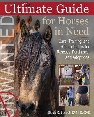 The Ultimate Guide for Horses in Need by Stacie G. Boswell