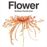 Flower by Andrew Zuckerman