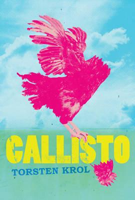 Callisto by Torsten Krol image