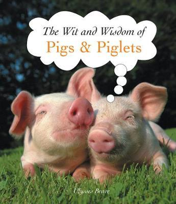 The Wit and Wisdom of Pigs & Piglets by Ulysses Brave