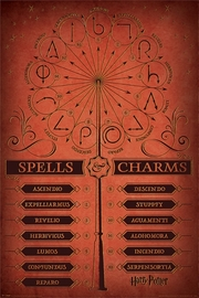 Harry Potter Spells And Charms Maxi Poster (621)