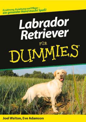 Labrador-Retriever Fur Dummies by Eve Adamson