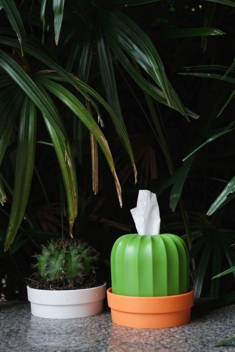 Qualy Cactiss Tissue Holder (Orange/Green) image