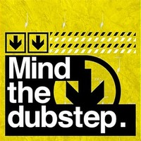 Mind The Dubstep by Various