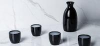 True: Moga 5-Piece Sake Set - Black image
