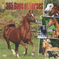 365 Days of Horses 2018 Square Wall Calendar
