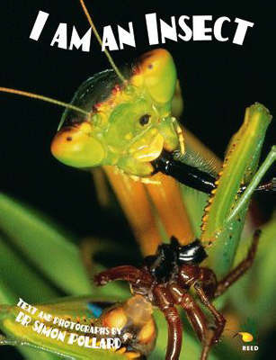 I I am an Insect