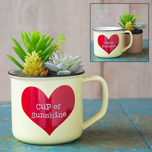 Natural Life: 2in1 Mug - Succulent Cup Of Sunshine image