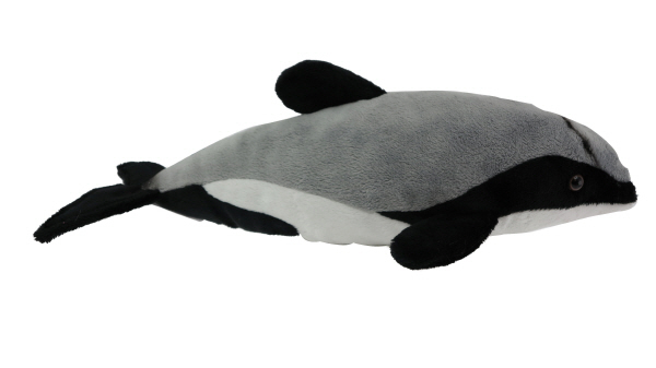 Hector Dolphin with sound 30cm