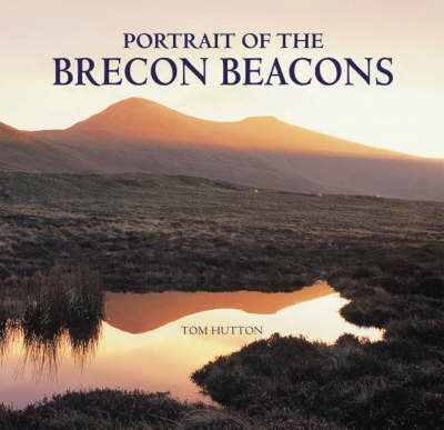 Portrait of the Brecon Beacons by Tom Hutton image
