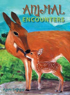 Animal Encounters by Agnes Bellegris