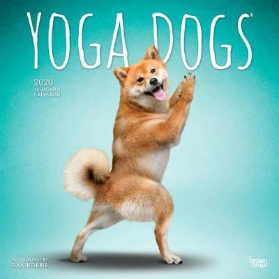 Yoga Dogs 2020 Square Wall Calendar