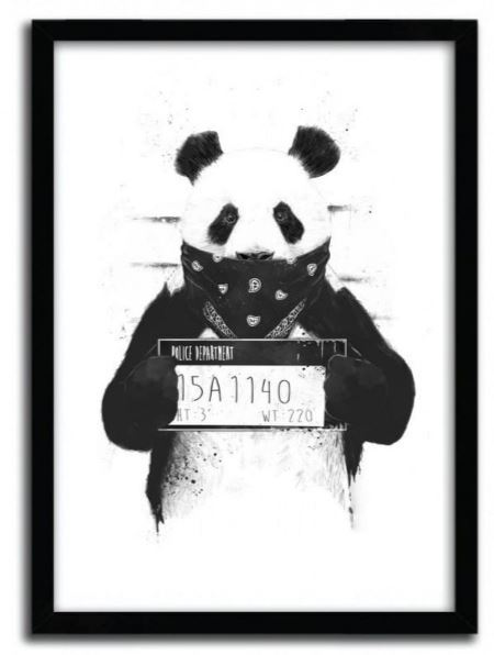 Balazs Solti Framed Illustration - Bad Panda