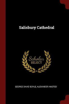 Salisbury Cathedral by George David Boyle image