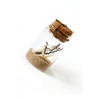 Short Story: Message in a bottle - Ocean Breeze