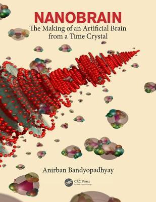 Nanobrain by Anirban Bandyopadhyay image