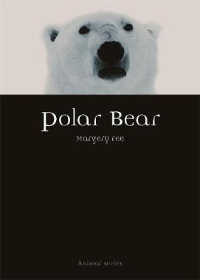 Polar Bear by Margery Fee image