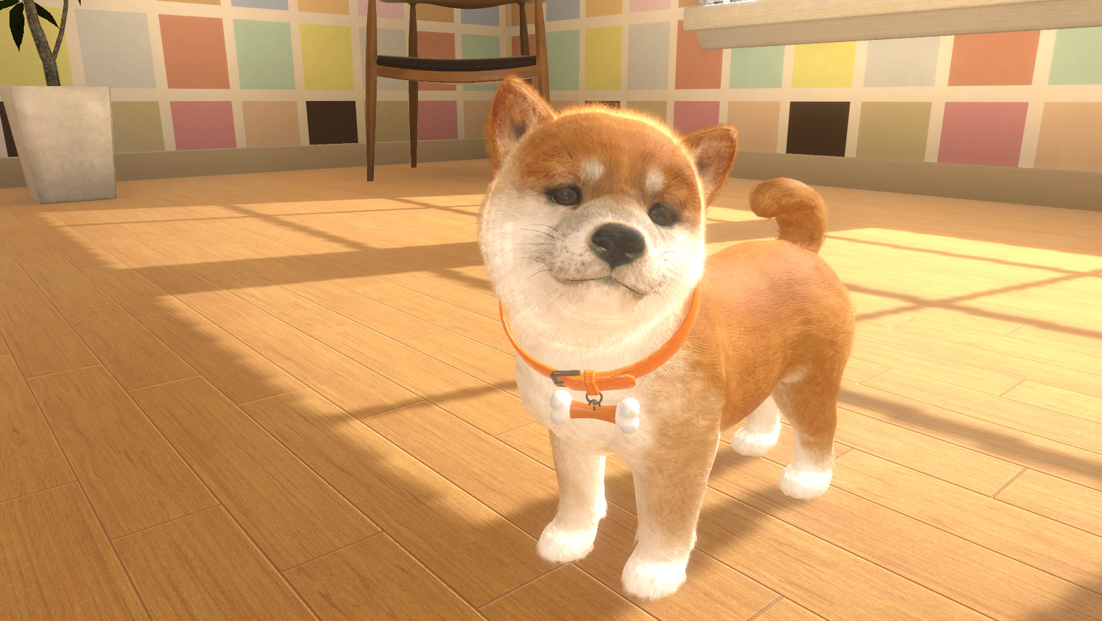 Little Friends: Dogs and Cats for Switch image