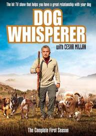 Dog Whisperer - The Complete 1st Season (4 Disc Set) on DVD image