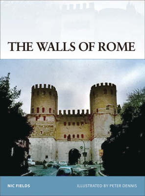 The Walls of Rome by Nic Fields