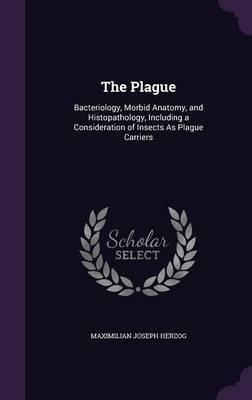 The Plague by Maximilian Joseph Herzog image