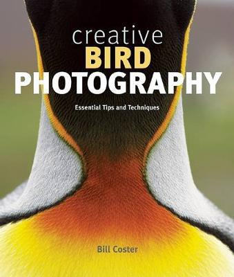 Creative Bird Photography by Bill Coster image
