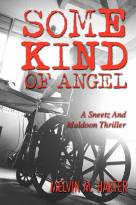 Some Kind of Angel: A Sneetz and Muldoon Thriller by Melvin M. Harter image