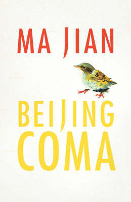 Beijing Coma by Ma Jian image