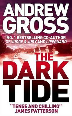 The Dark Tide by Andrew Gross image