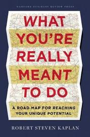 What You're Really Meant to Do by Robert Steven Kaplan