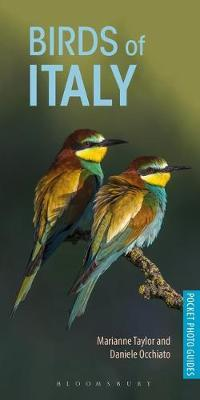 Birds of Italy by Marianne Taylor image