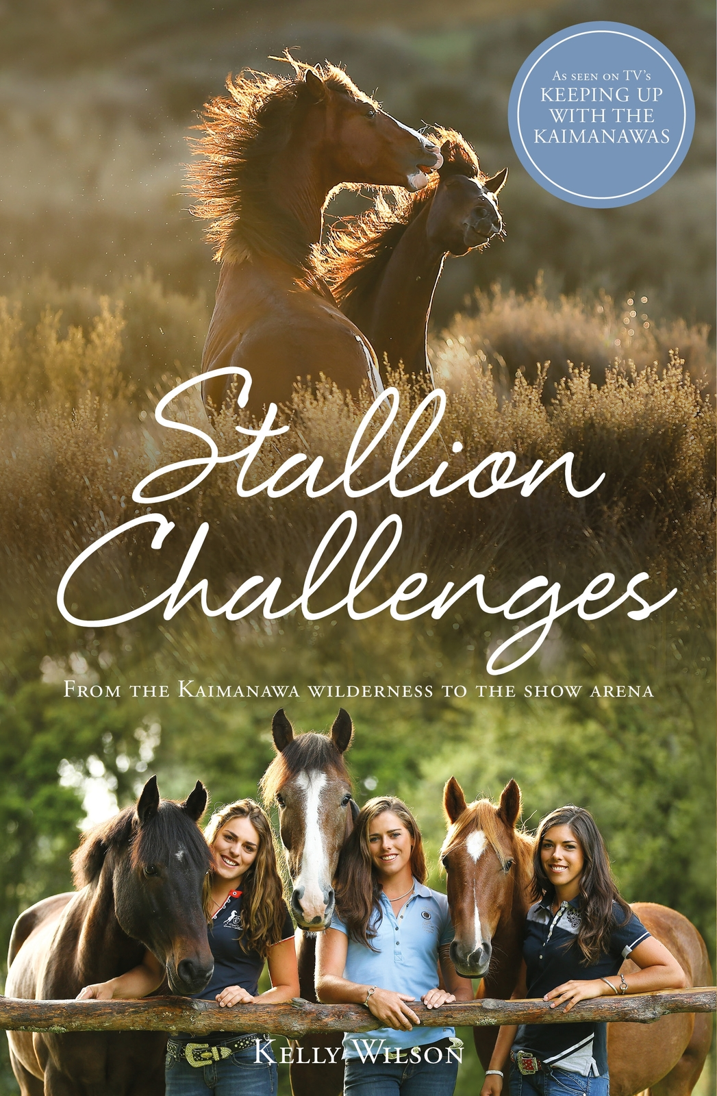 Stallion Challenges by Kelly Wilson image