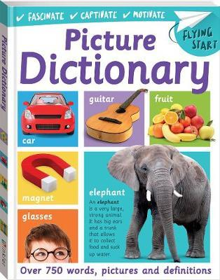Flying Start First Picture Dictionary